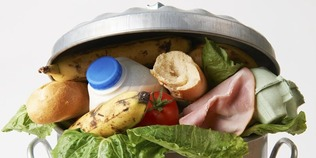 Expert panel discussion on reducing the impact of food waste