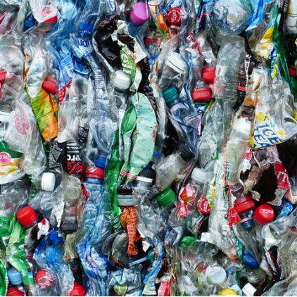 Plastic_bottles_-_no_attribution_required